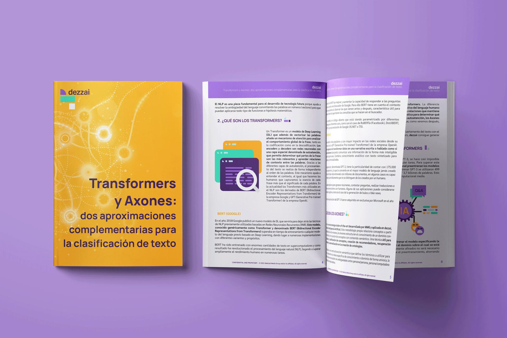 transformers y axones